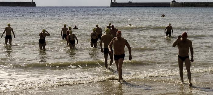Swimmers hit Dover Harbour